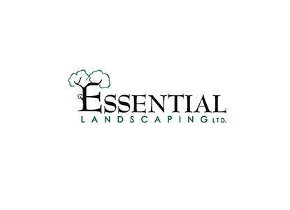 Summer Landscaping Services Mississauga